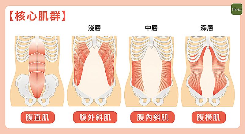 夏天來了,腹肌還在團結?專家推薦3個高效率腹部訓練 !
