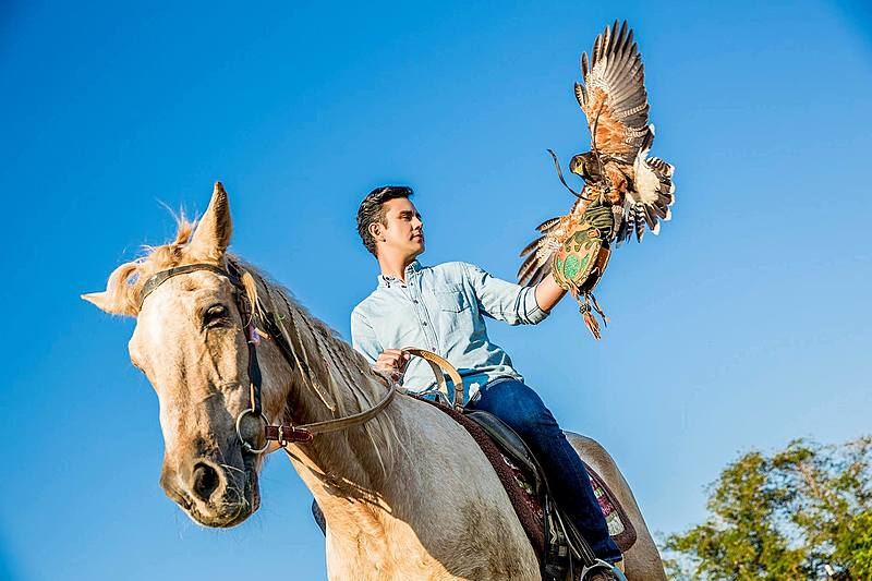 正夯的戶外運動,伴猛禽飛翔於山林-馴鷹協會會長陳建宏