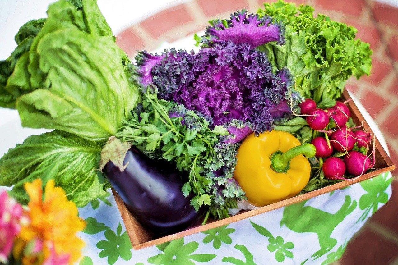 健康餐盒挑選指南!市售健身餐、減脂餐真的有效?教你從3大要點檢視